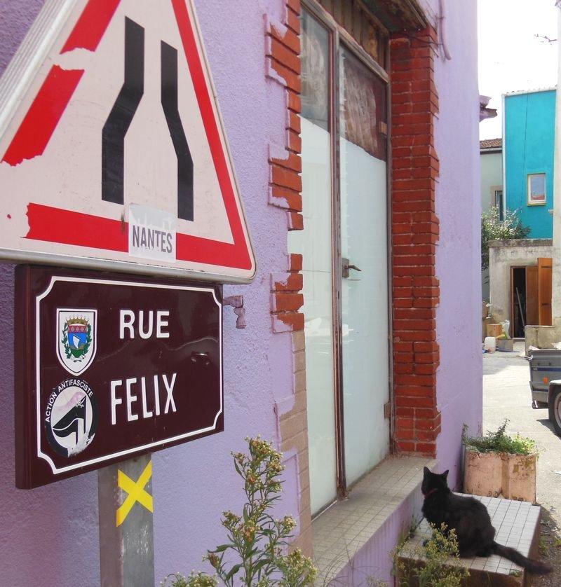 Félix le chat dans sa rue
