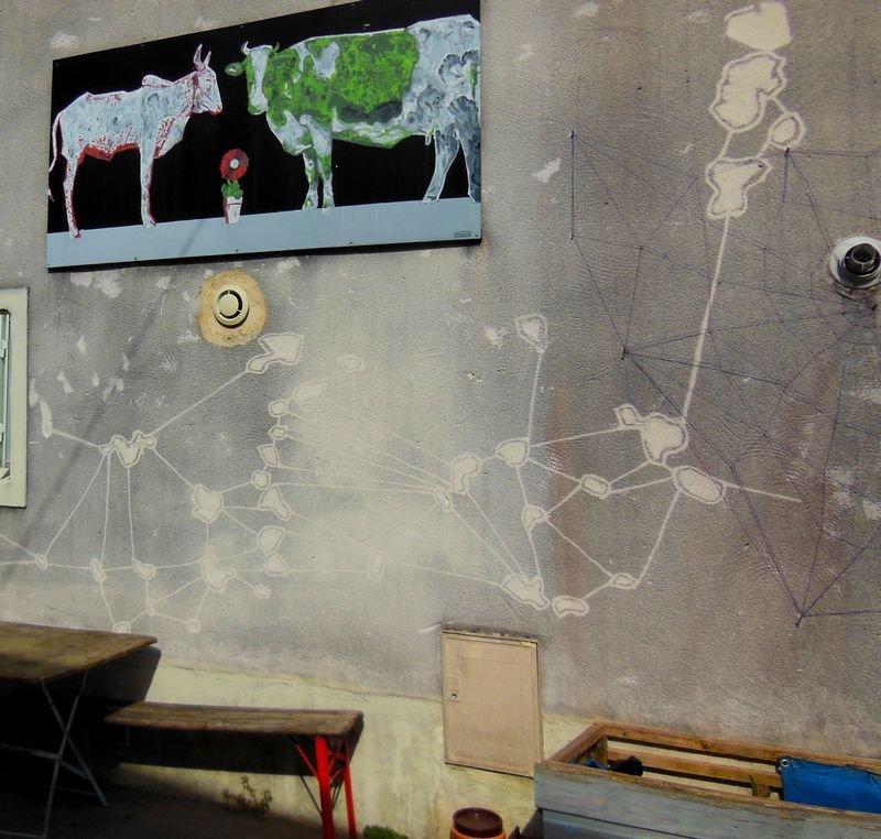 Vaches et toiles d'araignées