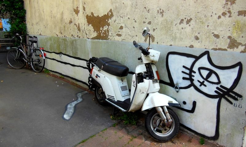 Le Chat et son Vespa