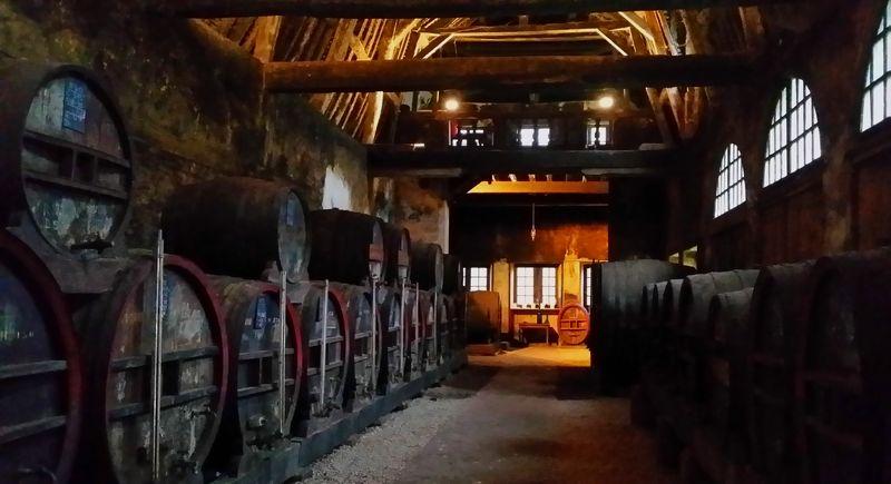 Le chais et ses vieux fûts (ancienne orangerie du château)