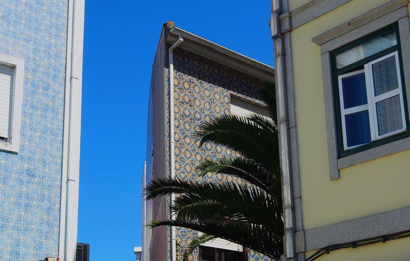 Azulejos colorés d'Aveiro