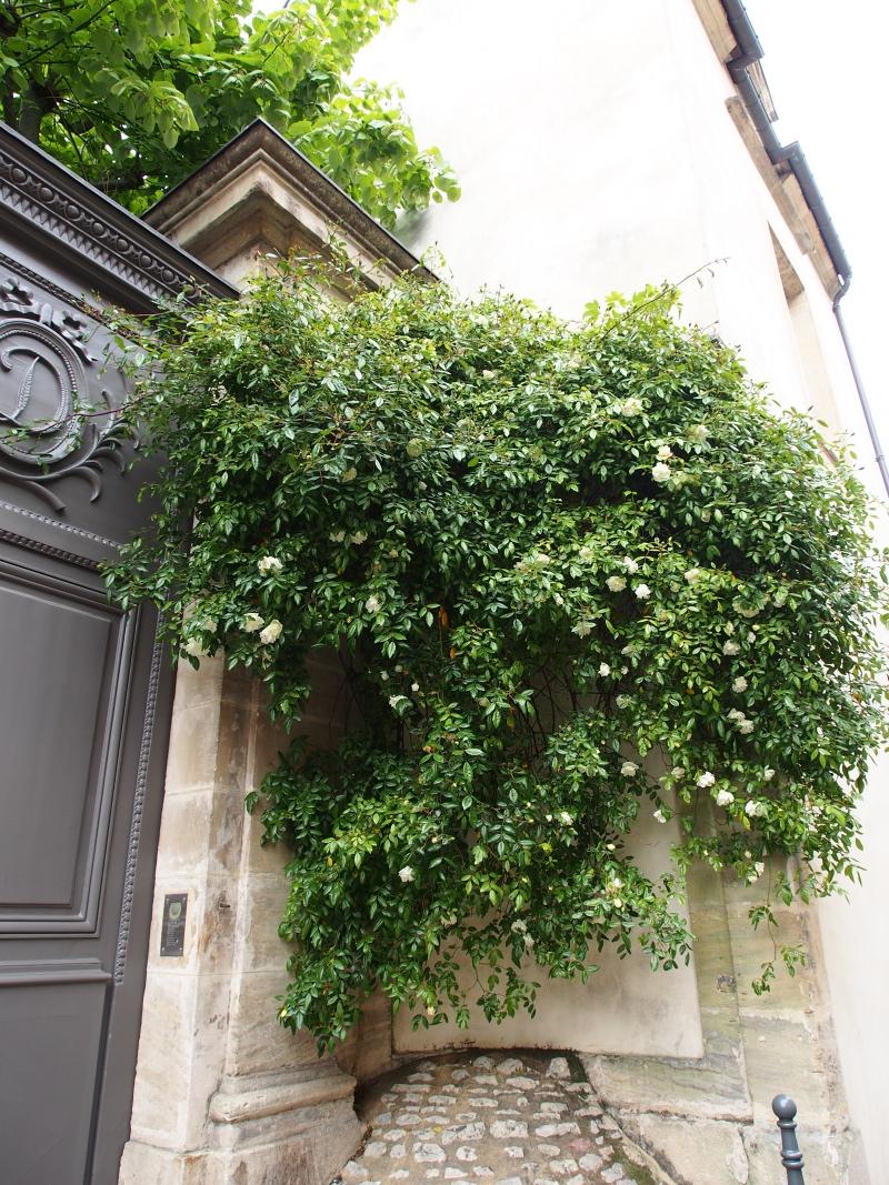 Bayeux-visite