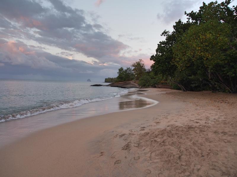 Sainte-Luce-Martinique