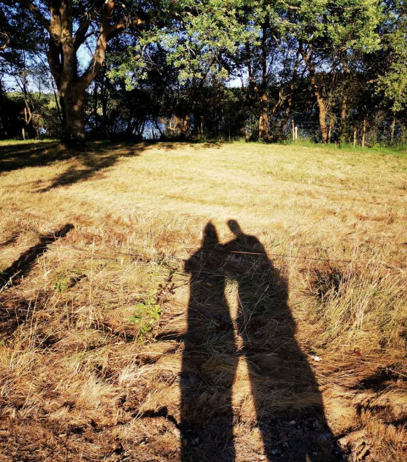 Promenade en amoureux